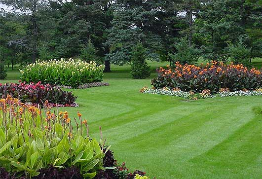 Rockford Area Lawn Care Services
