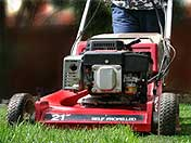 Rockford Mowing Contractors, Rockford Lawn Mowing Contractors, Rockford Lawn Care Contractors, Rockford Lawn Fertilizing Contractors Lawn Mowing Contractors Rockford, Lawn Care Contractors Rockford, Lawn Fertilizing Companies Rockford, Lawn Mowing Companies Rockford, Mowing, Rockford Lawn Care Companies, Rockford Mowing Companies, Property Maintenance, groundskeeping, lawn care, Rockford, Illinois