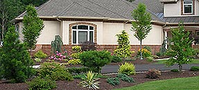 Greenscapes, Landscaping